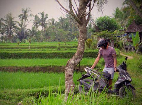 Rahvusvaheline juhiluba ja Indoneesia liiklus
